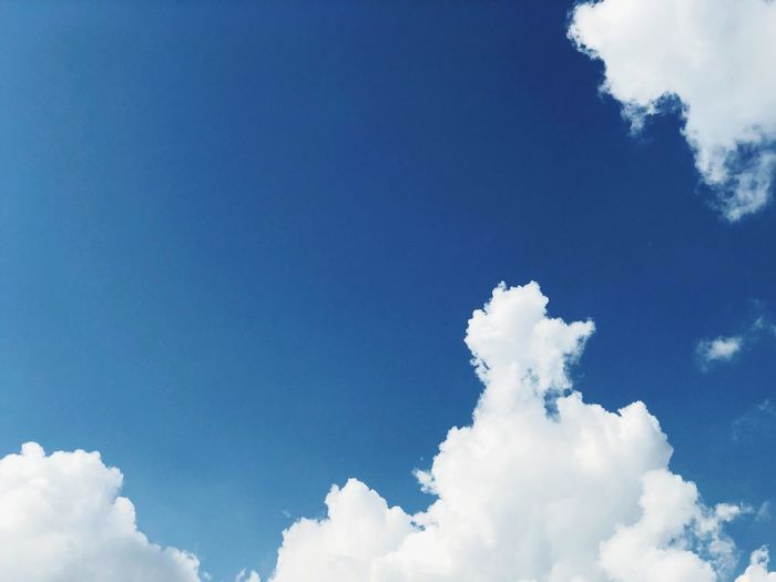 One fine day blue sky Background Blue Sky With Clouds Heavenly Sky Sunlight White Cloud Holiday Sky Cloud - Sky Blue Nature Day Beauty In Nature Low Angle View Blue Sky Scenics Sky Only Outdoors Tranquility No People