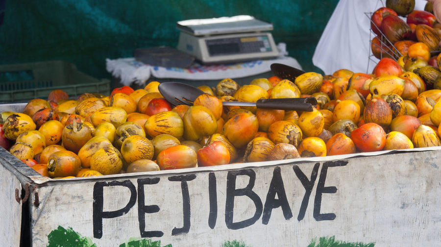 Pejibaye fruit on market in San Jose, Costa Rica - Pejibaye is the Spanish name of the fruit. - Bactris gasipaes is a species of palm native to the tropical forests of South and Central America and has more names: peach-palm, pewa, peyibay, peyibaye, pejivalle, pejibaye, chontaduro, chantaduro, pijuayo, pijiguao, tembe, pixbae, pupunheira, pupunha Chantaduro Choice Costa Rica Farmer's Market Food And Drink For Sale Freshness Fruit Healthy Eating Healthy Lifestyle Market Market Stall No People Orange - Fruit Outdoors Peach-palm Pejibaye Peyibay Raw Ripe San Jose Selling Text Tropical Tropical Fruits
