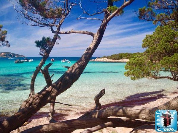 Sardiniacoasttocoast Sardinia Sardegna Summer Sea Enjoying Life Summer2015 Amazing View Life Is A Beach