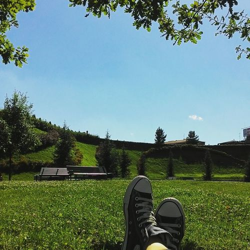 August In The City Summer In Milan Summer 2016 City Sun City Park Relax Thoughts Silence Of Nature Me And I