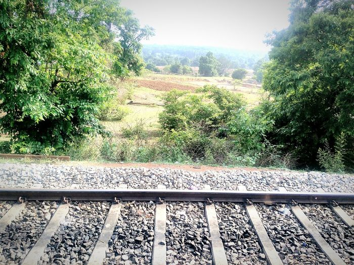 Nature Travelling Countryside Earlymorningscenes Beautifulmorning Lovelyclimate Traveldiaries Naturelove Railwaytrack Premonsoonseason Fields Lovewithit Travelphotography Naturelover