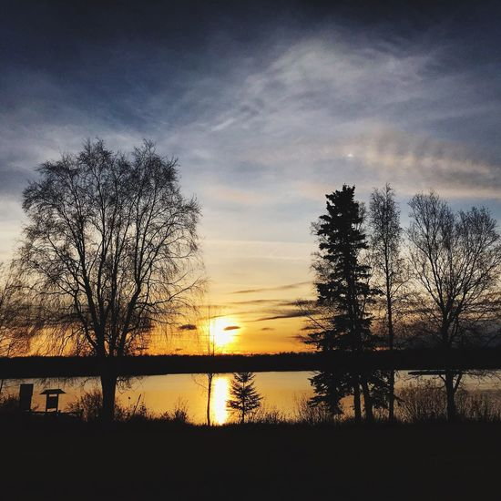 Willow Lake, AK Sunset Silhouette Sky Beauty In Nature Tree Scenics Nature Tranquility Tranquil Scene Cloud - Sky Reflection Bare Tree Lake Water No People Idyllic Travel Destinations Outdoors Landscape Day