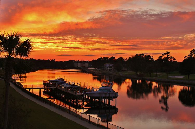 Vibrant orange sunset reflecting over the Inter-coastal waterway with boats in the waterway. Taken in Myrtle Beach, South Carolina Beautiful Sunset Beauty In Nature Boats In The Harbour Cloud - Sky Colorful Clouds Fluffy Clouds Intracoastal Waterway Landscape_photography Nature Nautical Vessel No People Orange Color Orange Glow Outdoors Reflection Reflections In The Water Silhouette Sky Sunset Sunset Reflections Tranquil Scene Tranquility Tree Vibrant Sunset Water
