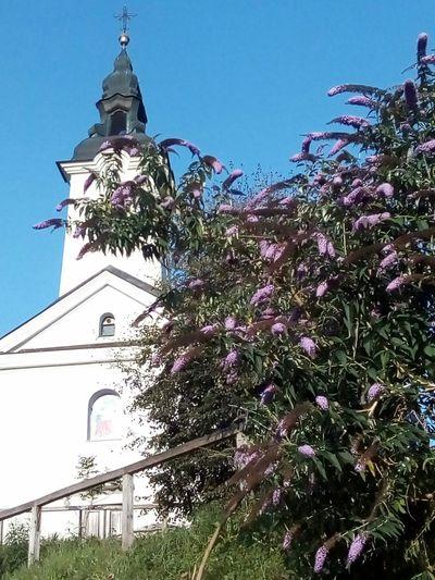 Churcharchitecture Church Tower Churchbuilding Churches ChurchAndSky Churchandnature Smartnoprilitiji Purple Flowers Naturearchitectureharmony