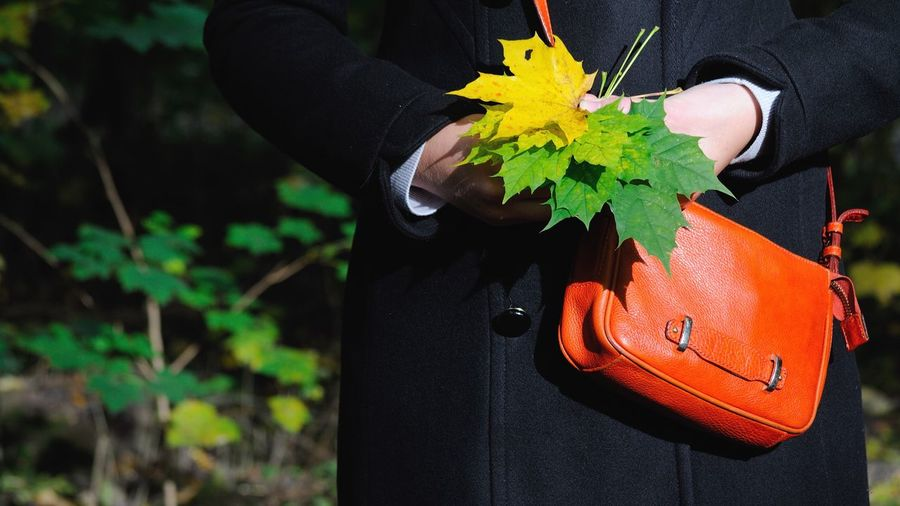 Midsection Of Woman Standing With Maple Leaves With Purse On Field