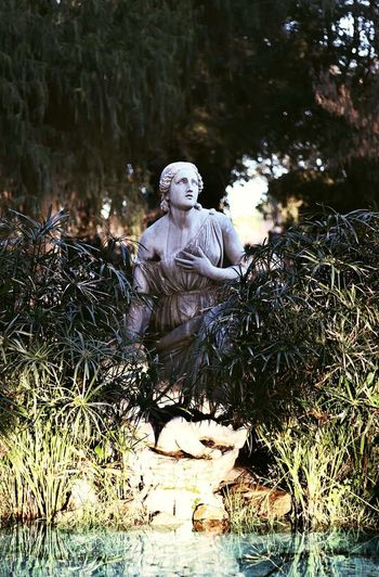 Rome. Moving Around Rome Water Statue Sculpture Human Representation Sculpted Figurine  Angel Jesus Christ Idol