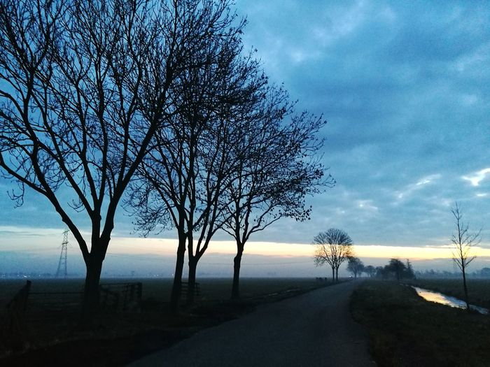 In the Early Morning😊 Way Ahaed Early Morning Upcoming Of The Sun. Trees And Nature Blue Sky Fog Behind The Trees And Field. Tree Water Sunset Bare Tree Silhouette Galaxy Branch Reflection Tree Area Atmospheric Mood Dramatic Sky Long Shadow - Shadow Romantic Sky Foggy HUAWEI Photo Award: After Dark