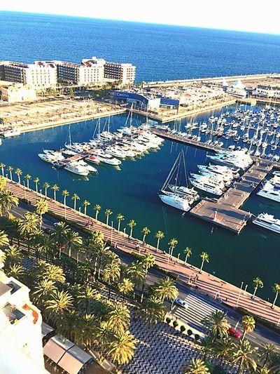 Alicante Explanada Alicante Alifornia Port Boat Palms Nautical Vessel High Angle View Architecture Transportation City Building Exterior Mode Of Transport Day Water
