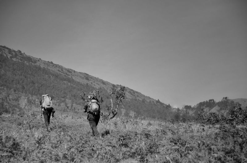 MOUNT RINJANI, LOMBOK INDONESIA. SEPT 16th 2017- Unidentified hikers start their journey to hike Mount Rinjani from sembalun route. Blackandwhite INDONESIA Mount Rinjani Hiker Sembalun Route Wallpaper Background ASIA Politics And Government Mountain Men Headwear Adventure Full Length Hiking Friendship Walking Weapon Hiking Pole Riot Uphill Mountain Climbing Hiker