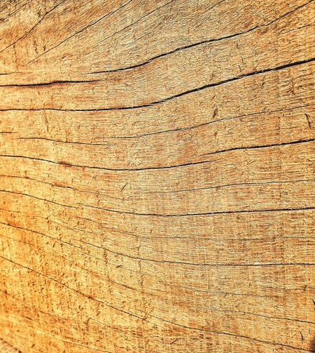 Textures And Surfaces Wood Eye4photography  EyeEmBestPics EyeEm Best Shots EyeEm Nature Lover EyeEm Best Shots - Nature Check This Out Taking Photos Africa Pattern Pieces Nature's Diversities Fine Art Photography