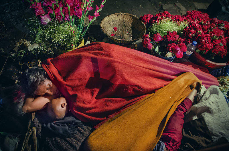 High angle view of woman sleeping with son by flowers at night
