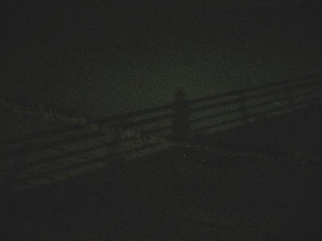 Shadow 月明かり Night Photography