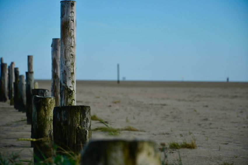 Nordsee Beach Sea Sand Nature Shore Wooden Post No People Day Outdoors Beauty In Nature Close-up Post Nikonphotography Nikon Nofilter Nikon D5200 Nature Sky EyeEmNewHere at Sankt Peter-Ording in Germany