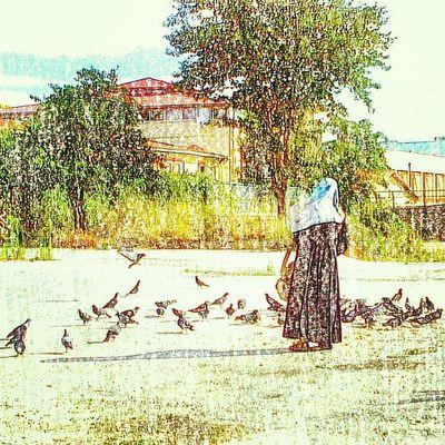 Bytaskinmise Taskinmiseistanbul Taskinmisephotographer Tasarimtaskinmise photographerbytaskinmise photobytaskin photographer photoshot fotografbytaskin follewer like amazing all_shots @handeyener @paltug grafikertaskinmise goldensunspot