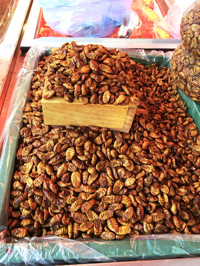 蚕 カイコ の 蛹 さなぎ。 Silkworm のサナギって食べられるんだと驚いたが、栄養豊富らしい。独特の匂いと聞いたけれど、怖くてに触れなかった…(笑)そういえば、こいつを缶詰にしたものを、スーパーやコンビニで見た。 ポンデギ と、呼ぶそうな… EyeEm Korea Korea Koreatown Streetphotography Herbal Medicine Market Korean Food
