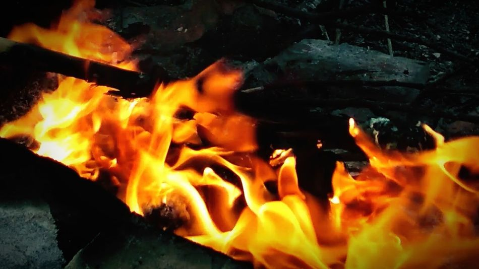 Burning Heat - Temperature Fire Fire - Natural Phenomenon Flame No People Nature Glowing Close-up Motion Orange Color Coal Indoors  Communication Yellow Warning Sign Blurred Motion Sign Wood - Material Firewood