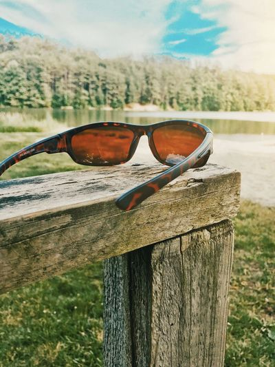 Sunglasses at the beach Sunglasses Sunlight Lake Water Beach Trees Blue Sky Lake View Glasses Focus On Foreground Sunglasses Day Fashion Nature Tree Wood - Material Sunlight Protection Close-up Land Outdoors Personal Accessory Sky Transparent