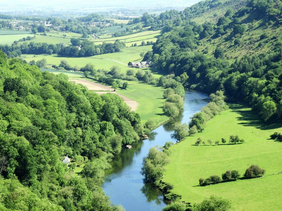 Agriculture Green Color Tree Landscape High Angle View Beauty In Nature Nature No People Scenics Outdoors Water Day Growth Tranquility Rural Scene Terraced Field Tea Crop Sky Capture The Moment From My Point Of View Symonds Yat