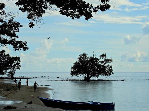 Halmahera beach Beach Boat On The Beach Halmahera Landscape Mangrove Nature Sea And Sky Sky And Clouds