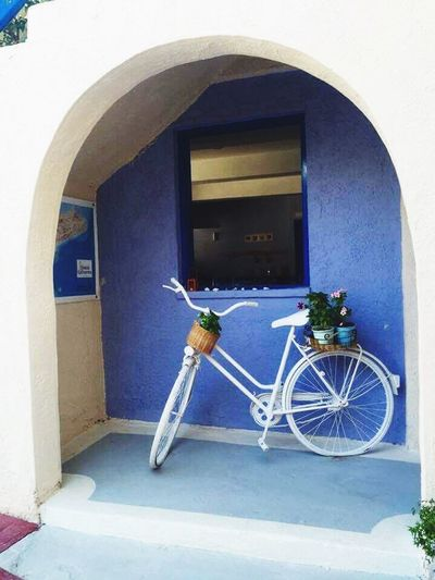 Bicycle Transportation Arch Flowered Bike White White Color Lightblue Plants Plants And Flowers Little Plants No People Building Exterior Mode Of Transport Freshness Tranquil Scene