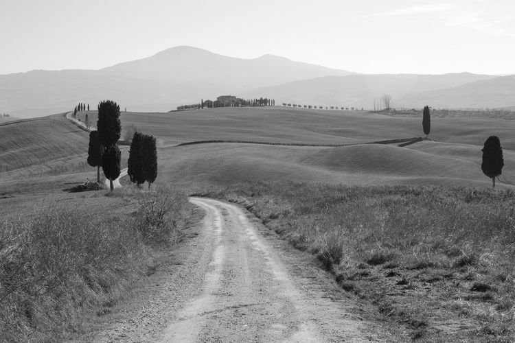 Pienza Pienza (toscana) Paesaggio Crete Senesi Siena Val D'orcia Cypresses Environment Landscape Sky Scenics - Nature Tranquil Scene Road Beauty In Nature Mountain Tranquility Plant Land Transportation Dirt Road Nature Field Day Non-urban Scene The Way Forward No People Direction Outdoors