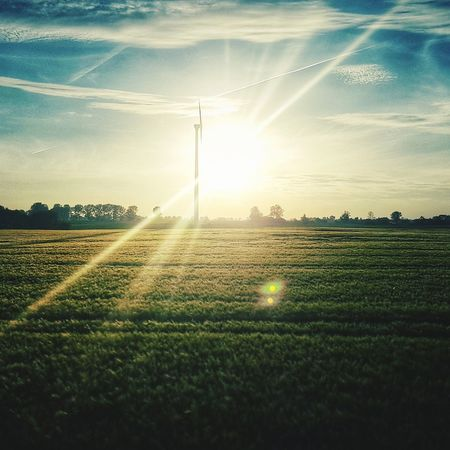 Agriculture Field Sunset Rural Scene Beauty In Nature Sunlight Summer No People Nature Grass Outdoors Freshness Day Sky Windmill Windmills Windmill Of The Day Scenics EyeEm EyeEm Best Edits EyeEm Best Shots EyeEmBestPics EyeEm Nature Lover Nature Beauty In Nature EyeEm Ready