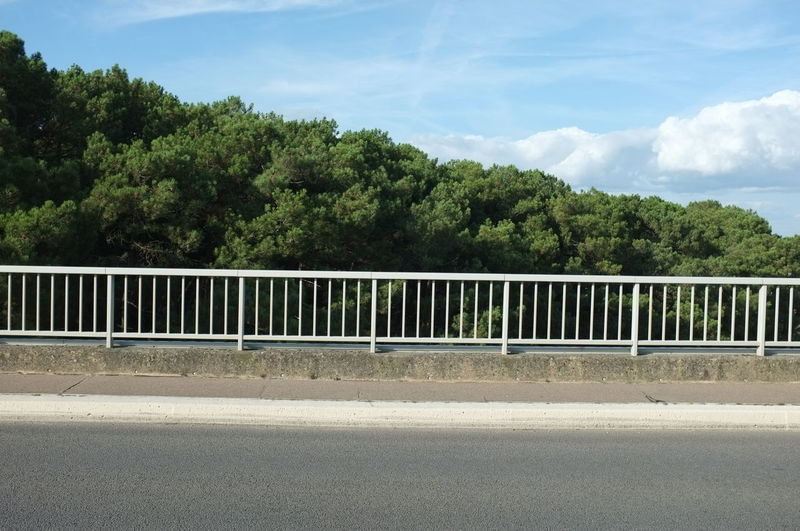 Architecture Beauty In Nature Built Structure Cloud - Sky Connection Crash Barrier Day Green Color Growth Nature No People Outdoors Plant Railing Road Sky Sunlight Tranquil Scene Tranquility Transportation Tree