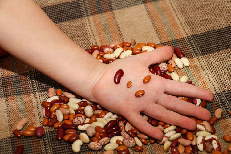 Cropped hand of person holding nut food on table