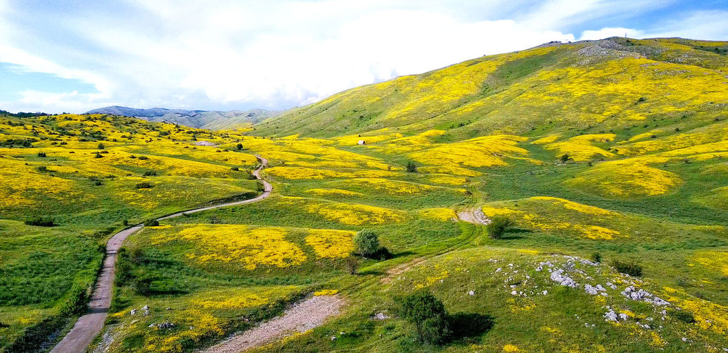 national park galicica in macedonia Beauty In Nature Day Galicica Galicica Mountain Landscape Macedonia Mountain National Park Nature No People Ohrid Outdoors Road Serpent Skopje Snake Spring Tranquility