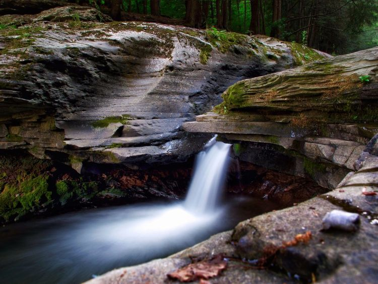 Stony Fork Creek. Waterfall Motion Flowing Water Scenics Long Exposure Water Nature Outdoors Beauty In Nature Rock - Object Blurred Motion Forest No People Rapid Travel Destinations Power In Nature Day Tree Sky State Forest Pennsylvania Timwegmanphotography Wild Beauty In Nature The Great Outdoors - 2017 EyeEm Awards