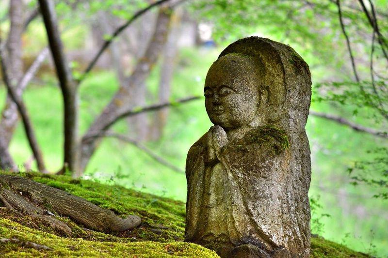 森で出逢った祈り EyeEm Gallery EyeEm Best Shots EyeEm Nature Lover Japanese Style 祈り
