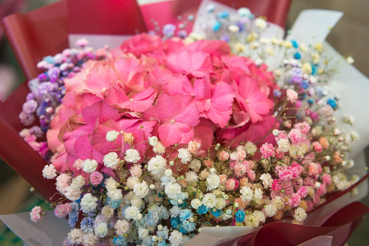 Flower Flowering Plant Plant Freshness Beauty In Nature Pink Color Close-up Vulnerability  Focus On Foreground Indoors  Fragility Petal Life Events Nature Flower Arrangement Arrangement Flower Head Celebration One Person Bouquet Bunch Of Flowers