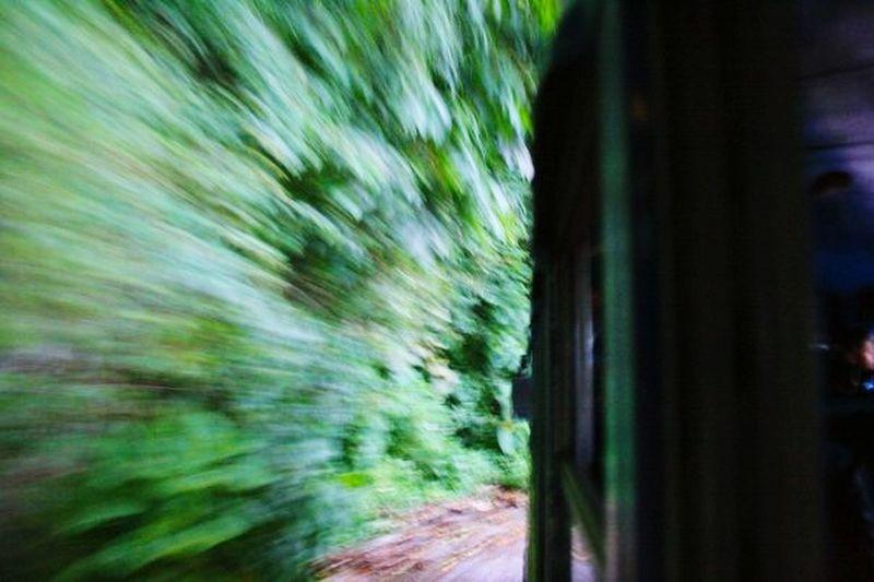 Bus-Súper fast=Scared😅