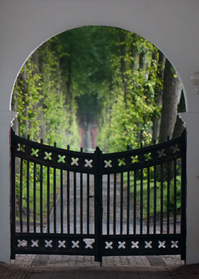 Close-up of gate against trees