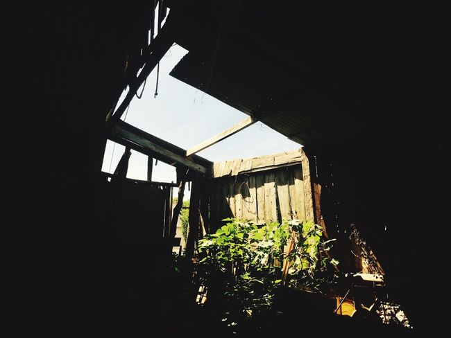 La cabane Built Structure Architecture No People Plant Growth Indoors  Night Nature Water EyeEmNewHere Branch Outdoors Scenics Day Tranquil Scene Old Old Buildings Tranquility