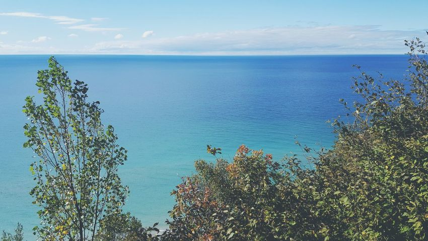 Tree Water Scenics Horizon Over Water Tranquil Scene Blue Beauty In Nature Sky Tranquility Growth Nature Idyllic Branch Treetop Day Seascape Non-urban Scene Outdoors Calm Sea And Sky Lake Michigan Michigan