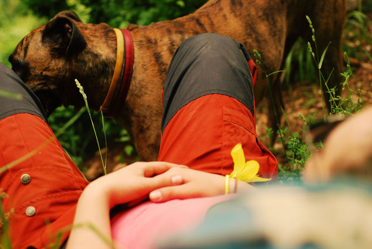 Low Section Of Woman Relaxing With Dog