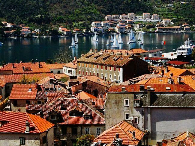 Summer Views Kotor Beauty Of Montenegro Montenegro Tourists Ilovethiscity Orange Starigrad