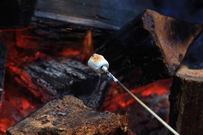 Close-up of marshmallow on skewer over campfire