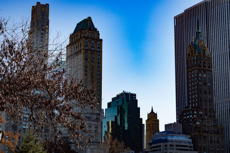 New York Building Exterior Architecture Built Structure Building City Office Building Exterior Sky Skyscraper Modern Tall - High Nature Low Angle View Tower Office Blue No People Tree Day Clear Sky Travel Destinations Financial District  Outdoors Cityscape Spire
