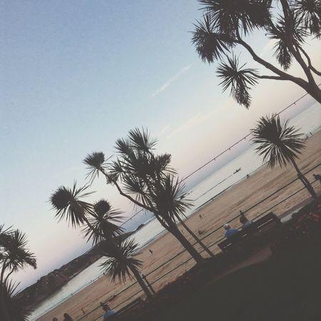 😍😍 Sunset Brelades Amazing Photog Beach Likeforlike Followforfollow Lfl Photography