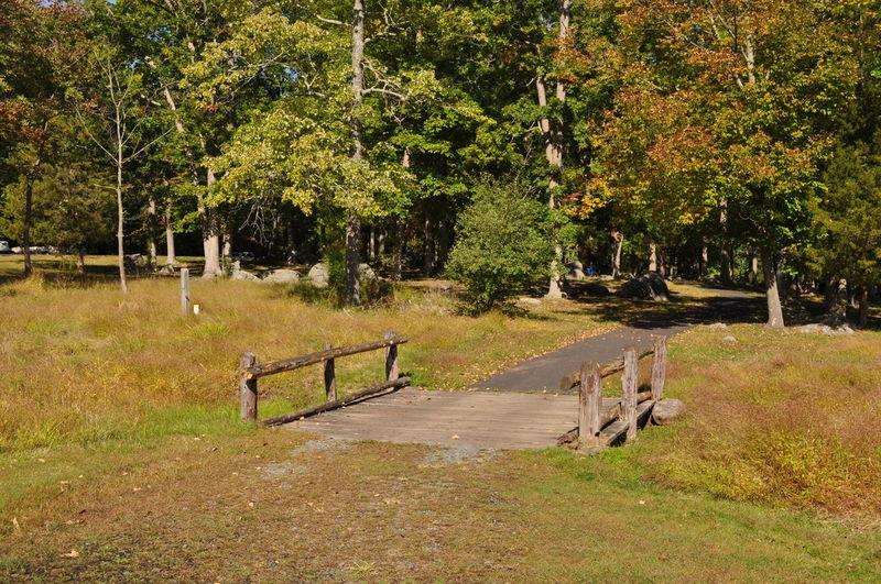 Wood Walking Bridge in a Park Autumn Wood Bridge Fall Landscape Nature No People Outdoors Park Walkway