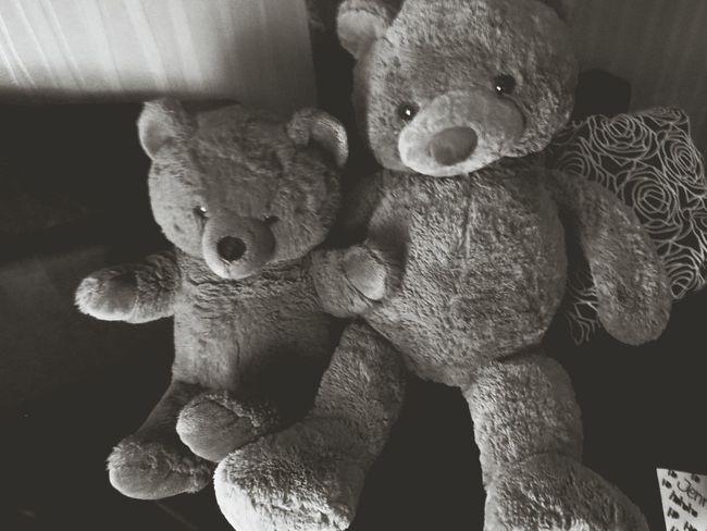 Teddy Bär ♥ Bar