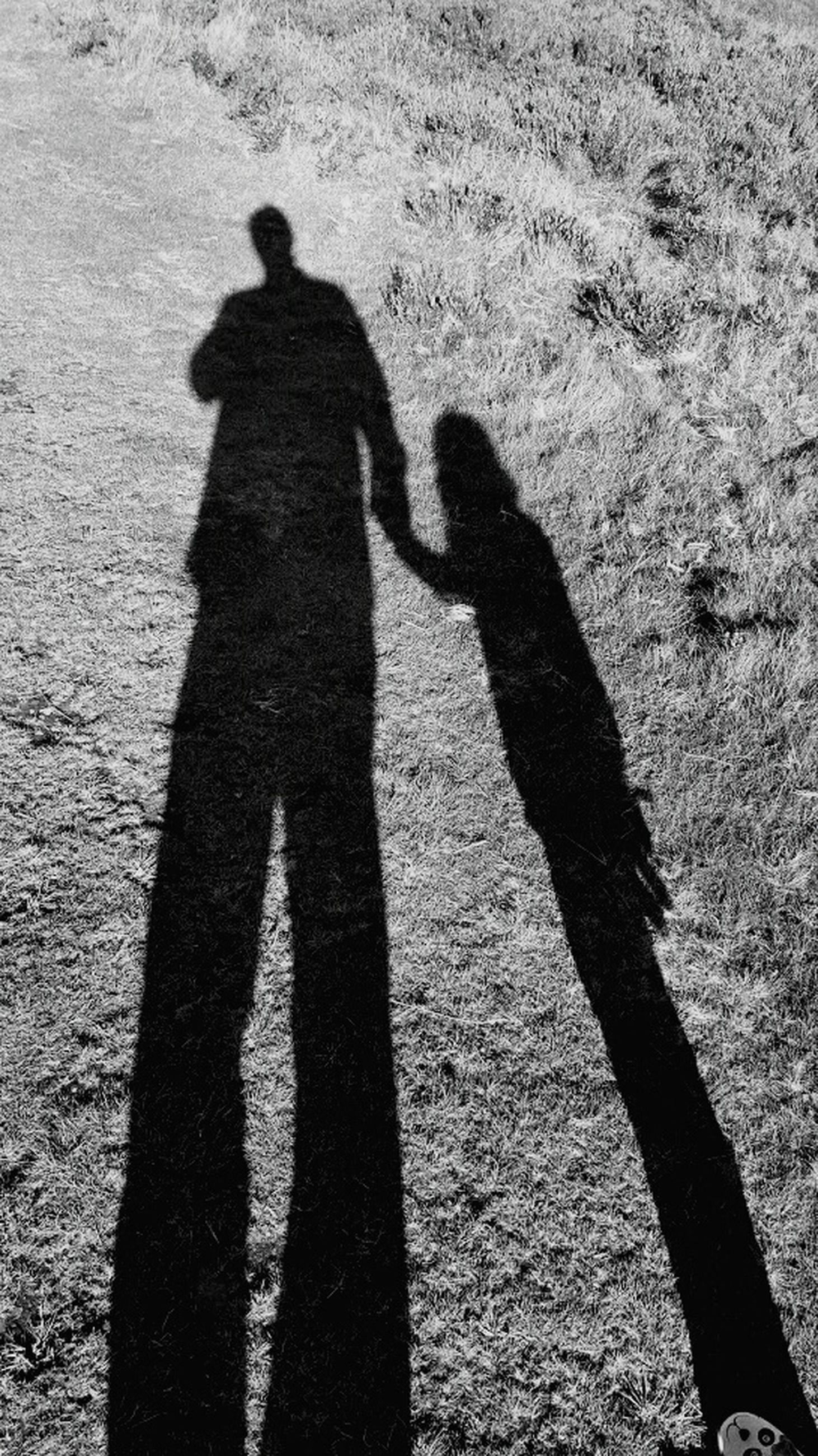 shadow, sunlight, high angle view, leisure activity, lifestyles, standing, ground, field, focus on shadow, park - man made space, day, outdoors, person, grassy