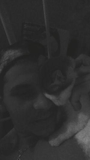 Love Love Love Mylittlecat Sleepwithmetonight So Tierd  Badface Blackandwhite