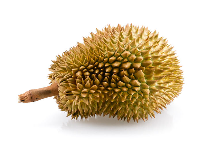 Studio Shot White Background Indoors  Close-up Freshness No People Still Life Food And Drink Cut Out Yellow Plant Spiked Food Nature Healthy Eating Wellbeing Single Object Beauty In Nature Flower Dry