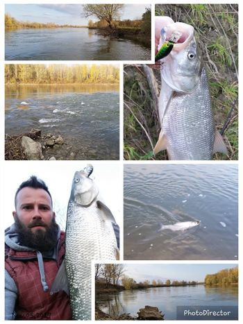 Wildlife & Nature Fishing River Drava Relaxing Time Water Pure Nature