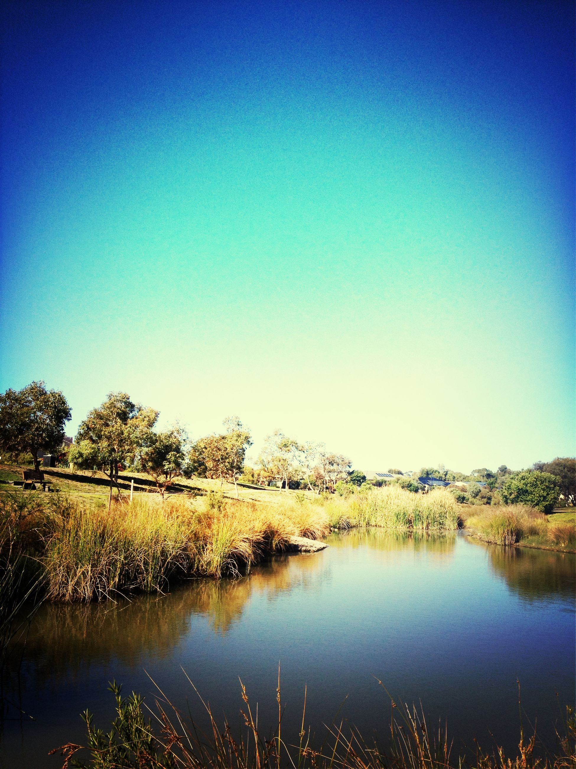 clear sky, water, blue, lake, reflection, copy space, tranquil scene, tranquility, scenics, beauty in nature, tree, waterfront, nature, standing water, calm, idyllic, countryside, lakeshore, non-urban scene, outdoors