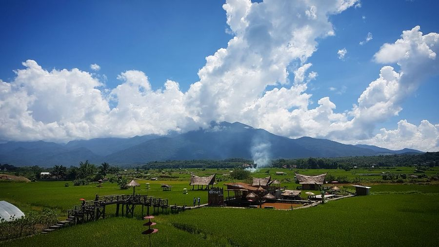 Nature is beautiful. Fields And Sky Rice Field Backgrounds Village Nutural View #Nature  Way Water Irrigation Equipment Arts Culture And Entertainment Rice Paddy Rice - Cereal Plant Cultivated Land Agricultural Field Farm