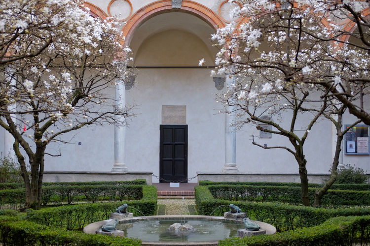 "view of cloister and the ""frog fountain"" , Basilica Santa Maria delle Grazie, Milan, Italy Bramante Fountain Renaissance Santa Maria Delle Grazie Tourist Attraction  Arches Architecture Blossom Cloistress Columns Convent Flower Frog Fountain Iconic Magnolias No People Outdoors Peaceful Renaissance Architecture Santamariadellegrazie Spring Tourist Destination"